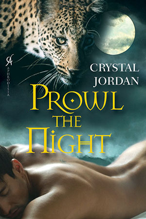 Prowl The Night cover