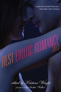 Best Erotic Romance 2013 cover