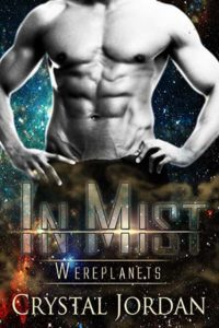 In Mist cover